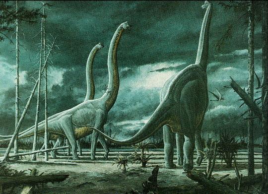 کشف بزرگترین استخوان یک دایناسور در اسپانیا